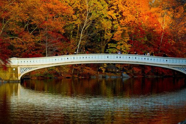 Bow_bridge_fav-2