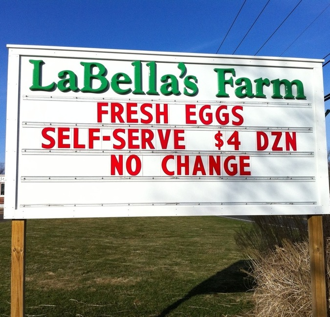 Labella_s_farm