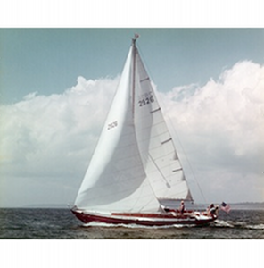 Wooden_sail2