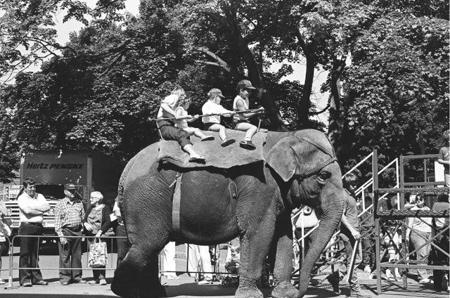 1985_04b_elephantride