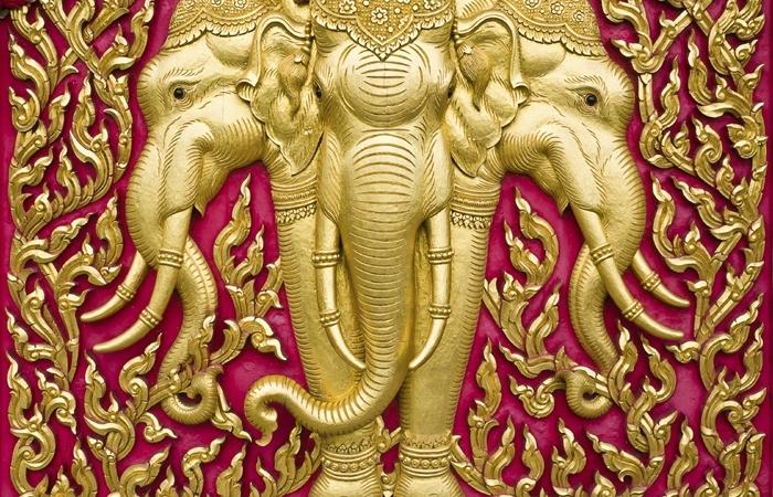 Logo_elephant