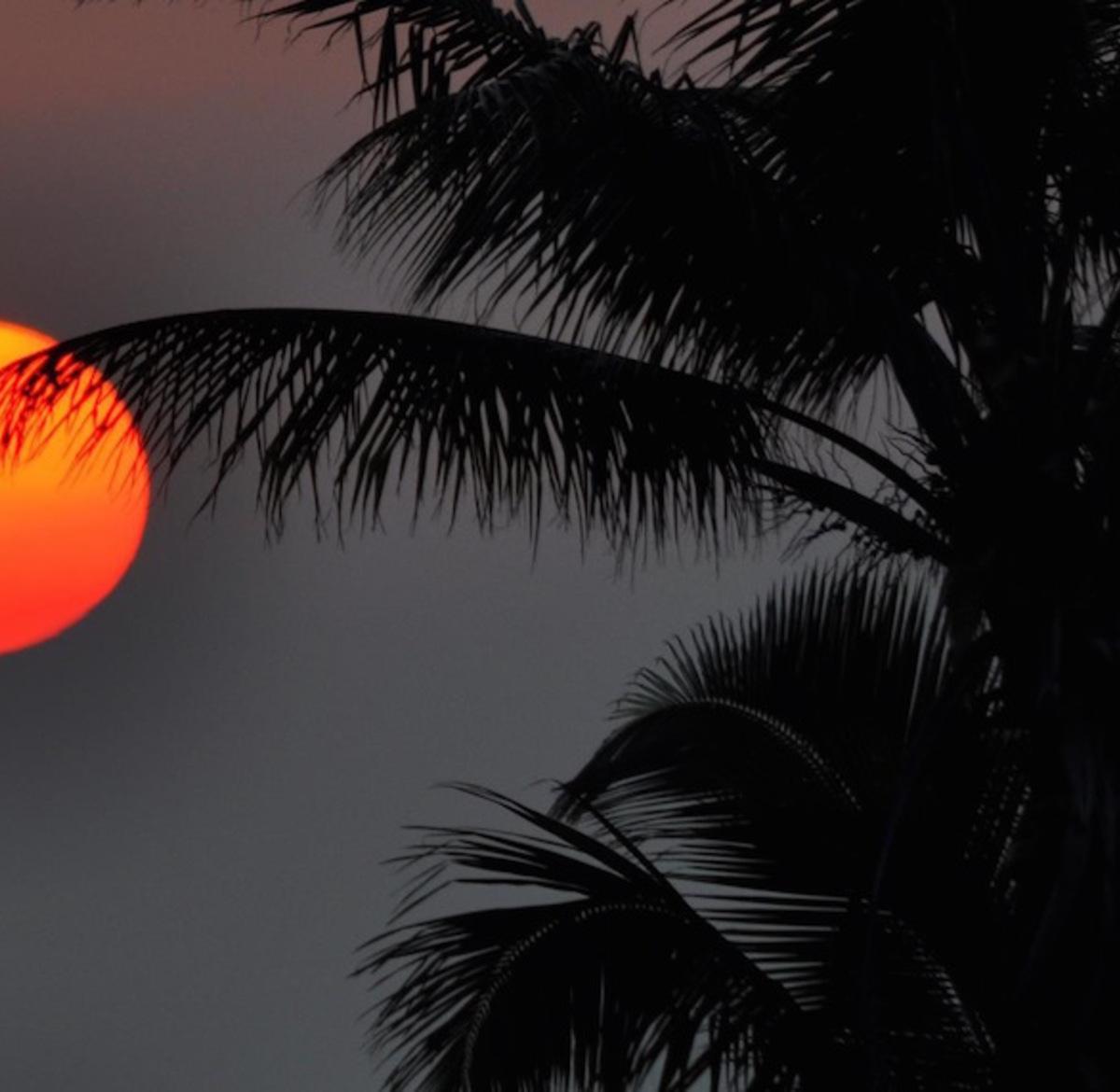 Wed_sunset