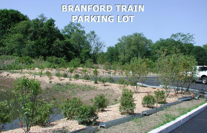 Branford_train_1