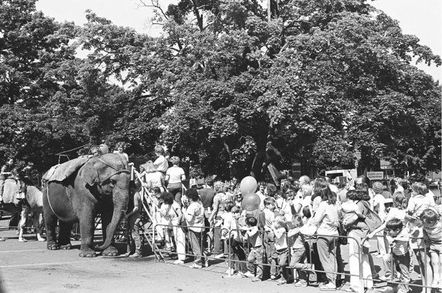 1985_04c_elephantride