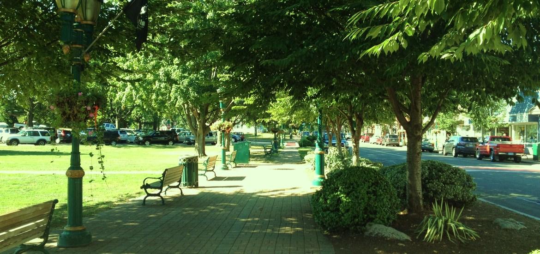 Town_green_1