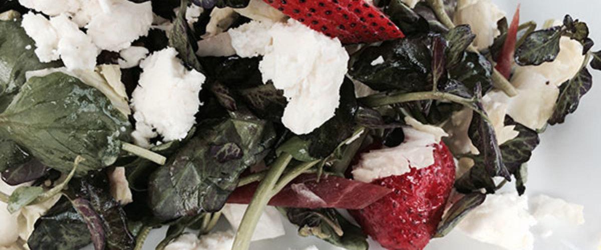 Kale_&_frisee_salad